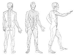 Demystifying Acupuncture: What Are Channels?